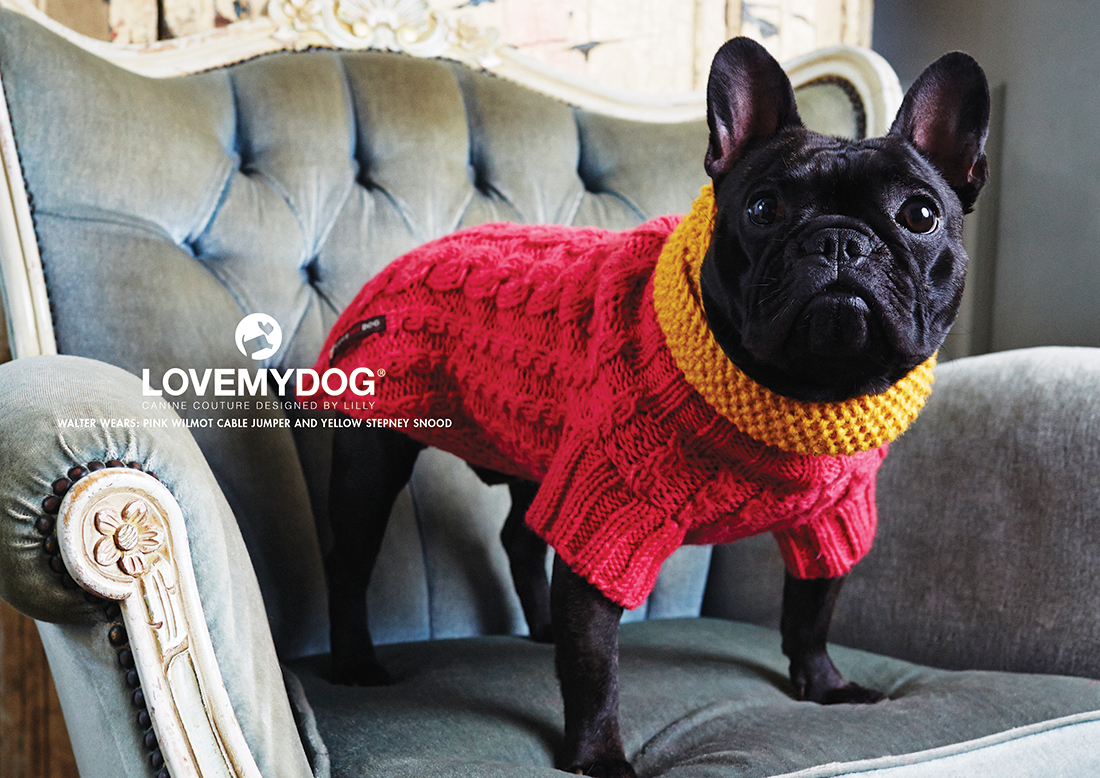Luxusní svetry pro psy