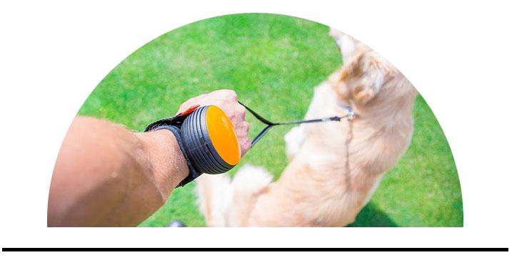 Lishinu hands-free vodítko pro psy