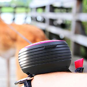 Revoluce ve venčení psa: Přichází Lishinu, první inteligentní hands-free vodítko