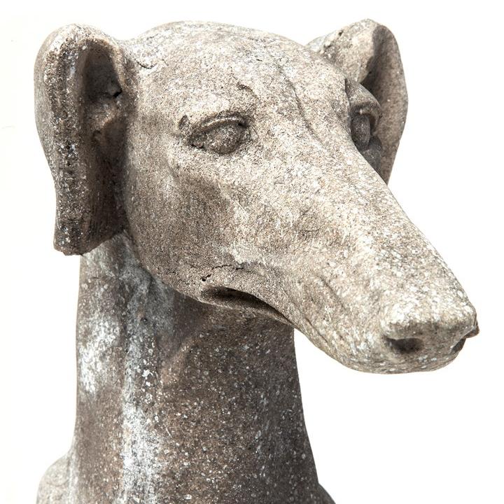 chrt, socha, greyhound
