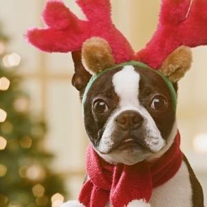 5 vánočních dárků, se kterými oslníte