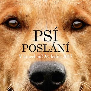 Psí poslání: Filmová povinnost pro milovníky psů